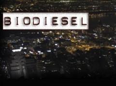 auto-orbit-and-biodiesel